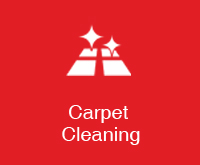 carpet cleaning cleaning image
